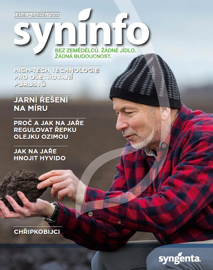 Syninfo 1-3 2021