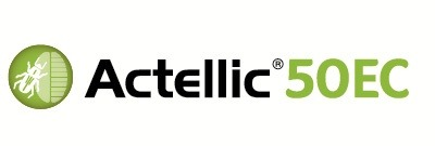 Actellic Syngenta