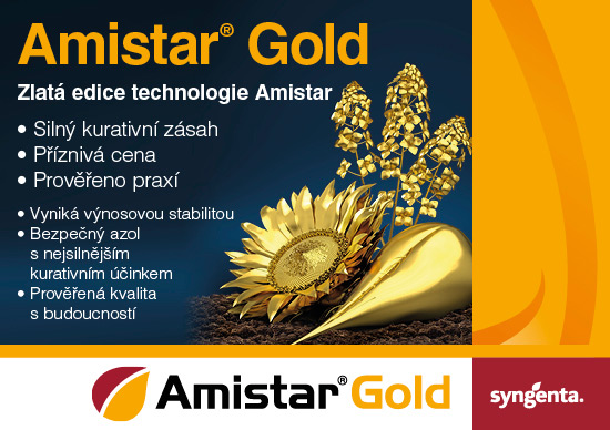 amistar gold_maly_banner