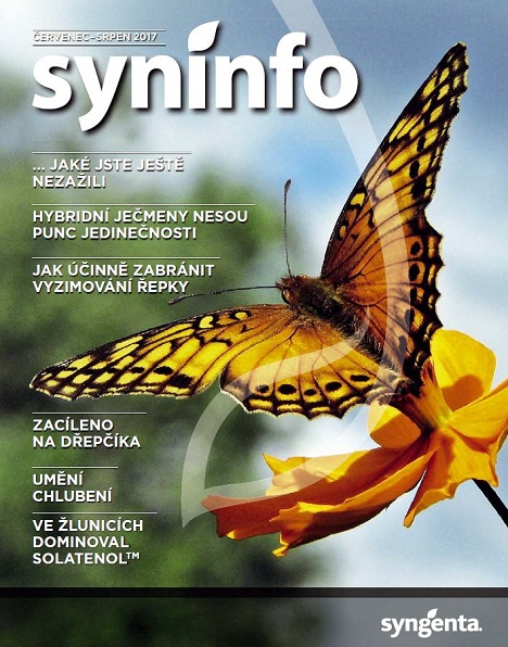 syninfo 7_8